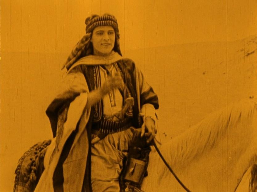 The Sheik 7